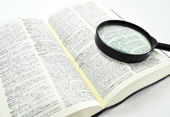 Japanese Law Translation